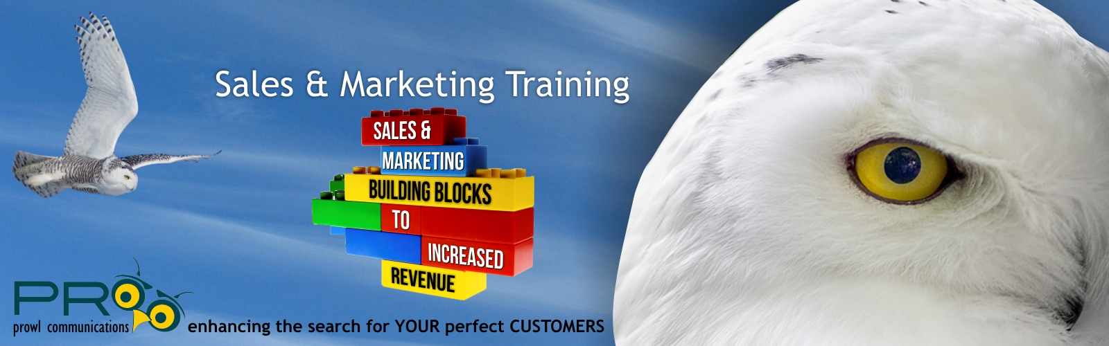 Prowl logo, snowy owl, building blocks, sales, marketing, revenue
