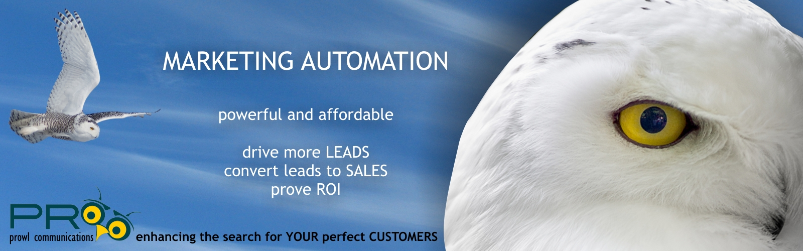 PRowl Communications  logo, snowy owl, marketing automation description